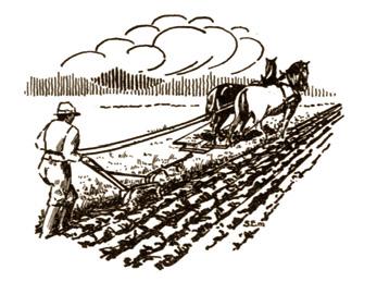 Jordbrukets och landsbygdens historia